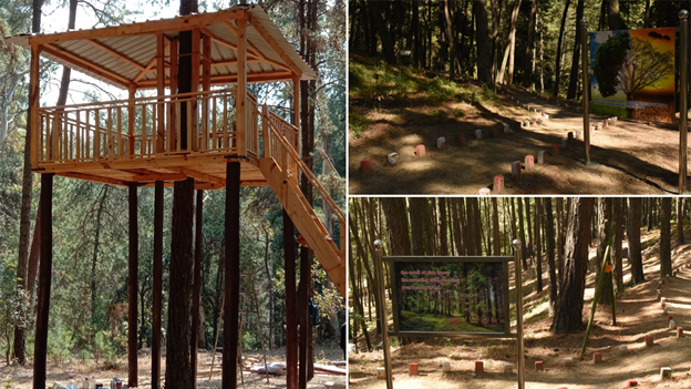 India's First Forest Healing Centre is Inaugurated in Ranikhet, Uttarakhand