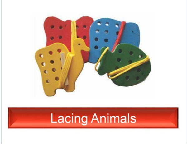 Lacing Animals