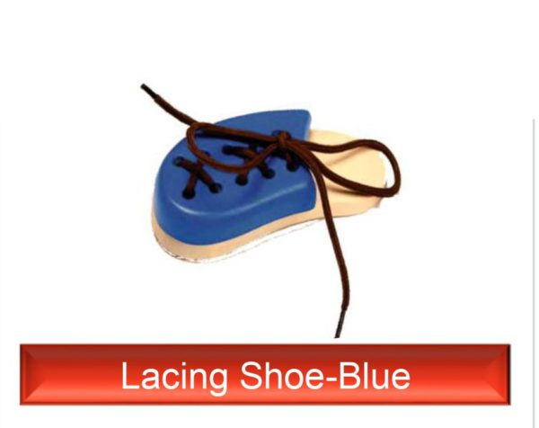 Lacing Shoe Blue