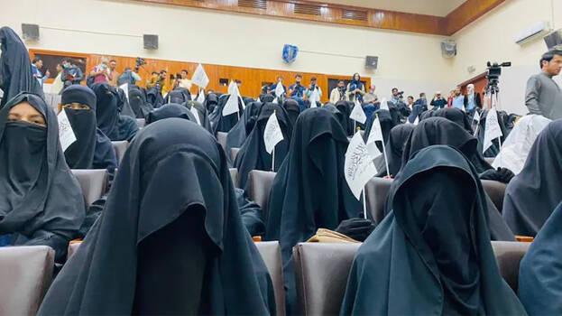 'Taliban Women Can Study at University but in Segregated Classes' Said Taliban